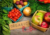 Mau Menyelamatkan Bumi? Jangan Konsumsi Makanan Organik!