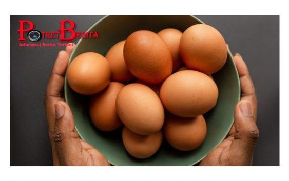 Studi: Makan 3 Butir Telur dalam Seminggu Tingkatkan Risiko Kematian Dini